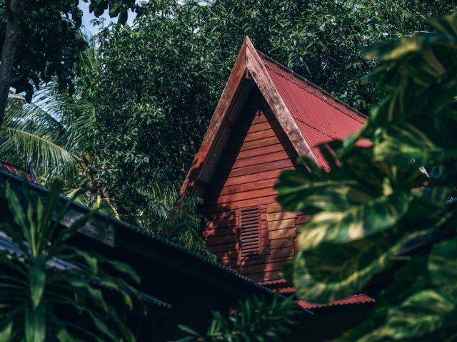 เพิ่มพื้นที่สีเขียวหน้าบ้าน พร้อมเสริมดวงรับทรัพย์ ด้วยการปลูกต้นไม้มงคล