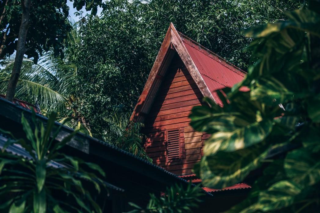 ต้นไม้มงคล ปลูกหน้าบ้าน